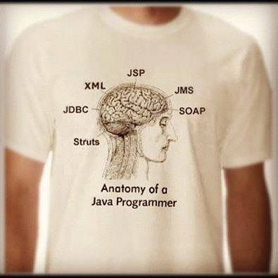 Anatomy of a Java Programmer