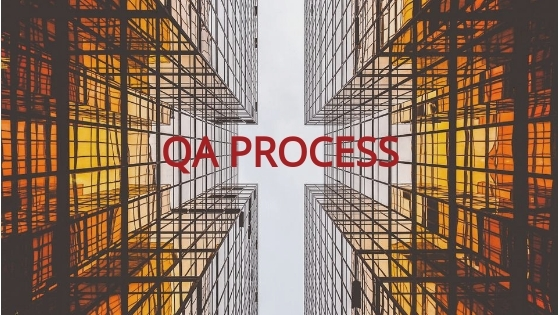 Organization of QA Process for a Software Development Project